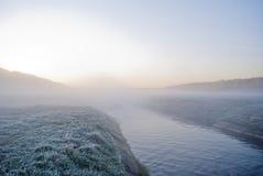 Wczesny poranek mgła, mróz w polu na zielonych roślinach, wiosny tło i Obraz Stock
