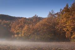 Wczesny poranek mgła w górze Zdjęcie Stock
