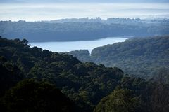 Wczesny poranek mgiełka nad lasowym Zalesionym rezerwuarem i rezerwatem wodnym strzelał od Olinda w Dandenong leśniczych na zewną zdjęcia royalty free
