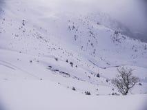 Wczesny poranek w górę góry Fotografia Royalty Free