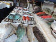 Wczesny poranek w Shanghai rybim rynku Obraz Royalty Free