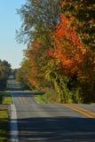 Wczesny Poranek wiejska droga Zdjęcie Stock