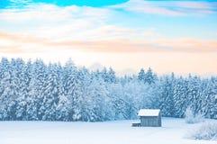 Wczesny poranek zimy wiejski krajobraz z śnieżystym lasem Obrazy Stock
