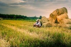 wczesny ryż zbierać Zdjęcie Royalty Free