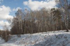 Wczesny wiosna krajobraz z parkiem zdjęcia stock