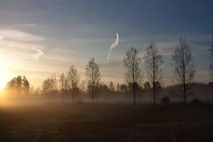 Wczesny wschód słońca Zdjęcie Royalty Free