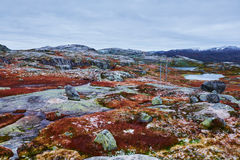 Wczesny zima krajobraz w Norway zdjęcia royalty free