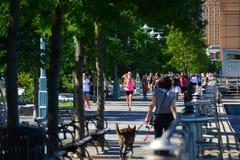 Wczesnych poranków biegaczów Bateryjnego parka miasta deptak, NYC Zdjęcie Stock
