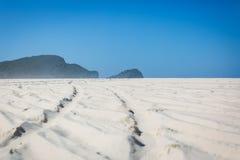 4wd在海滩的轮子轨道 库存图片