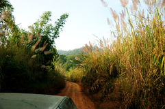4WD Crossing Mountain. 4wd pick up driving in the mountain, Thailand Royalty Free Stock Photography