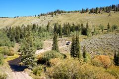 4WD vehicle driving through alpine scenery. Along a winding dirt road through pine forests in a mountain valley Stock Photos
