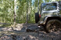4WD vehicle driving through soft mud. On a rough forestry track through trees in a close up view of the bogged down rear wheel Stock Images