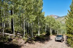 4WD vehicle driving though forests on a dirt track. In mountainous alpine terrain approaching the camera Royalty Free Stock Photo