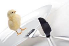 Weâve começ a galinha para o jantar Foto de Stock Royalty Free