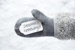 Wełny rękawiczka, etykietka, śnieg, tekst Przyprawia powitania zdjęcia royalty free