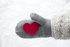 Wełny rękawiczka Z Czerwonym sercem, śnieg Fotografia Royalty Free