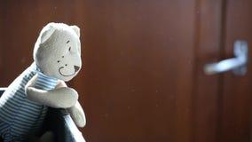 Wełny zabawki niedźwiedzia pyłu hd materiał filmowy zbiory