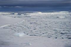 Brittle ice in Antarctica peninsula. Weak brittle ice in the Weddell Sea in the Antarctic Peninsula.n Stock Photo