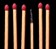 Weakest Link. Group of matches with a burned one in the middle Stock Photography