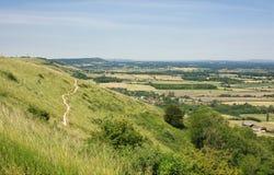 Weald и южные спуски, Сассекс, Англия стоковая фотография rf