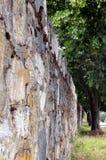 Weall della roccia Immagini Stock