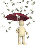 Wealth. Symbol of wealth and success -  rain from dollars Stock Photos