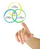Wealth Management. Presenting diagram of Wealth Management Stock Images
