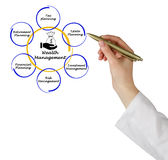 Wealth Management. Presenting diagram of Wealth Management Royalty Free Stock Images