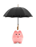 Wealth protection concept. Piggy Bank under umbrella. On a white background Stock Image