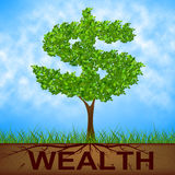 Wealth Tree Shows American Dollars And Branch Stock Photography