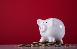 Wealthy piggy bank. Piggy bank over a lot of coins with a red background Royalty Free Stock Photos