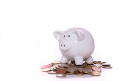 Wealthy piggy bank. Piggy bank over a lot of coins with a red background Stock Photos