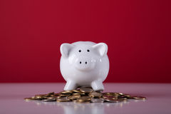 Wealthy piggy bank. Piggy bank over a lot of coins with a red background Royalty Free Stock Photography