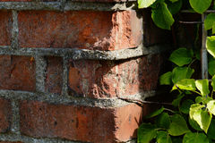 Wear to old bricks in outside wall. Royalty Free Stock Images