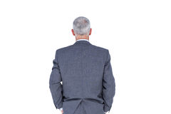 Wear view of businessman with grey hair Stock Images