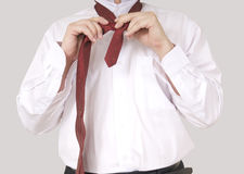Wearing necktie Royalty Free Stock Images
