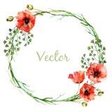 Wearth de la amapola ilustración del vector