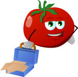 Weary but smiling tomato with an opened briefcase Stock Photos