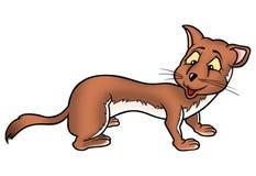 Weasel 01 Stock Image