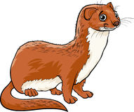 Weasel animal cartoon illustration Royalty Free Stock Image