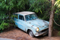 Weasley family car Flying Ford Anglia crashed with trees Stock Photo