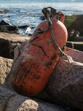 Weather Beaten Bouy on Rocks. Along Atlantic coast in Maine Stock Photography