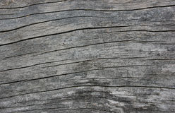 Weather-beaten wood surface closeup Royalty Free Stock Photo