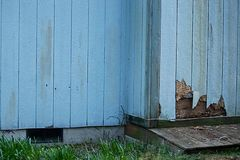Weather and bug damage to home with siding. Old cracked discolored siding on house in need or repair royalty free stock photography