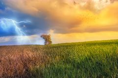 Weather changing. Image in two stock photos