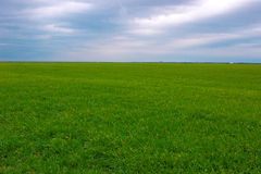 Weather and Climate. Beautiful Landscape meadow on a cloudy day, photography Royalty Free Stock Photo