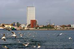 Weather on a Klaipeda port - autumn waves Stock Photo