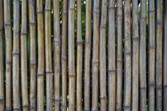 Bamboo Fence. Weather tested Bamboo Fence in Maui Royalty Free Stock Photos