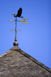 Weather Vane. Bird weather vane on roof set against blue sky Royalty Free Stock Images