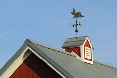 Weather Vane on Cupola. Pig weather Vane on red Cupola Stock Photography
